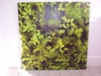 naturbilleder-2006-036-jpg-for-web-normal